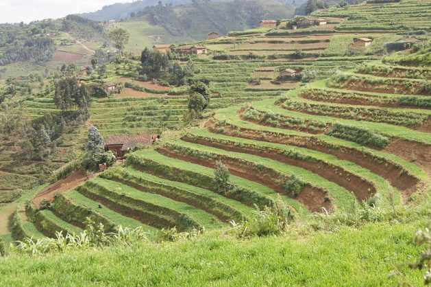 Rwanda may be a small country of some 12 million people, but its membership in the East African Community provides it with a market of some 100 million. Credit: Aimable Twahirwa/IPS
