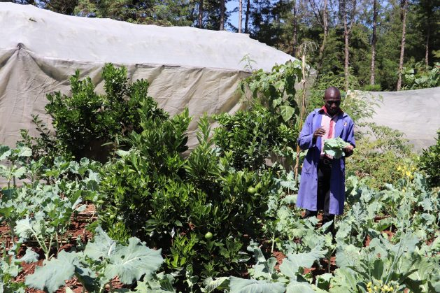 Samson Tanui, from Kenya's Eldoret town in the Rift Valley region, is practising agroecology and his permaculture unit has become the centre of attraction for farmers from near and afar amid food shortages during the current COVID-19 pandemic. Credit: Isaiah Esipisu/IPS