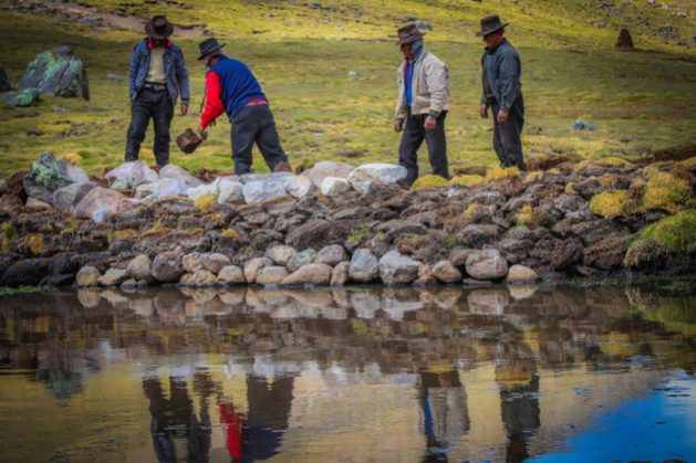 Local residents of Churia, a village of some 25 families at more than 3,100 meters above sea level in the highlands of the Peruvian department of Ayacucho, are building simple dikes to fill ponds with water to irrigate their crops, water their animals and consume at home. CREDIT: Courtesy of Huñuc Mayu