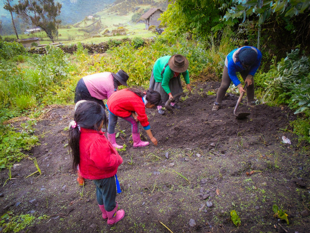 Women from several Andean highlands communities in Ayacucho, Peru, have played a very active role in harvesting water, including protecting the headwaters of streams. In the picture, a group of women and girls are involved in a community activity in Oronccoy, a village about 3,200 meters above sea level. CREDIT: Courtesy of Huñuc Mayu