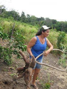 """Family farming is a """"critical sector"""" for Latin American and the Caribbean (LAC), with approximately 16.5 million farm holdings across the region. Credit: Mario Osava/IPS"""