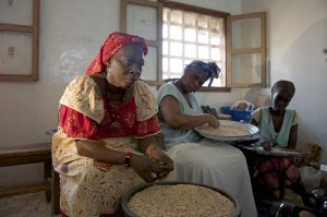 A small but growing number of women are heading up agribusinesses in Africa, some of which are producing innovative products to combat malnutrition. Credit: Jeff Haskins/IPS
