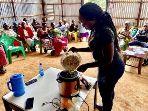 Despite the progress and the essential role of clean energy services to spur socio-economic development, approximately 2.8 billion people lack access to clean fuels and technologies for cooking. Access to clean cooking solutions remains particularly challenging in Sub-Saharan Africa
