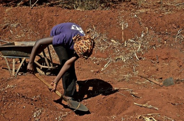 Climate-linked disasters are robbing us of the same allies that are supposed to help us in fighting climate change: the beneficial soil microbes and the complex network of microorganisms inhabiting the soil