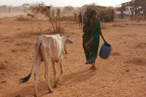 The United Nations World Food Programme (WFP) warned that the world was facing a dual pandemic – COVID-19 and hunger and said the international community must prioritise starvation, conflict and migration to stave off a worldwide food crisis. Credit: James Jeffrey/IPS