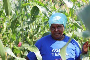 Halima Elias Mtwethe from Mtepa Village in southern Tanzania is one of the smallholder farmers who borrowed from the Mahanje Savings and Credit Co-operative Society (SACCOS). Credit: Isaiah Esipisu/IPS