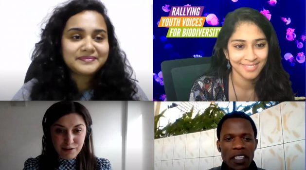 The United Nations Secretary-General's Envoy on Youth, Jayathma Wickramanayake, told IPS that the Summit achieved an important goal of bringing institutions and political conversations closer to young people. Clockwise from top left: Jayathma Wickramanayake, Swetha Stotra Bhashyam, Emmanuel Sindikubwabo, Diana Garlytska. Courtesy: International Union for Conservation of Nature (IUCN)
