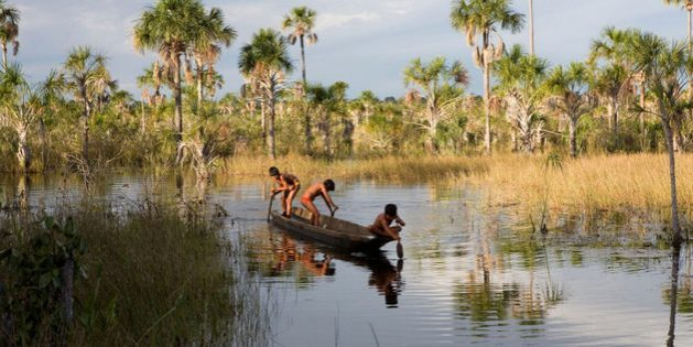 The peoples of the Xingu say agricultural activity beyond the borders of their territory has impacted fish populations (image: Alamy)