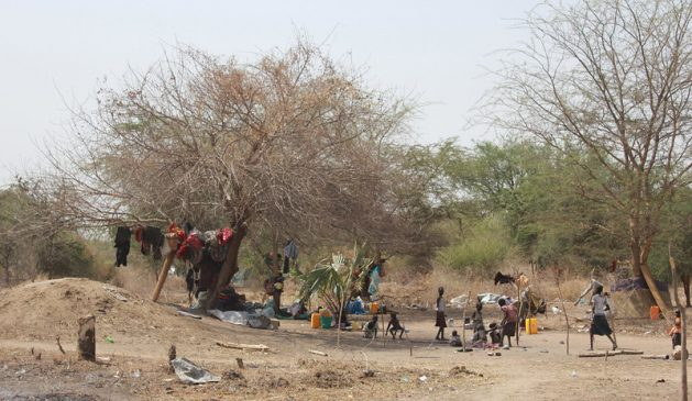 A new report categorized people in Burkina Faso, South Sudan and Yemen as being in 'Catastrophe,' meaning that they need immediate action to prevent widespread death and collapse of livelihoods. This year's report on Food Crises presents the grimmest snapshot to date of global food insecurity. Thousands of displaced people camping under trees in Minkaman, northeastern South Sudan.(file photo). Credit: Andrew Green/IPS