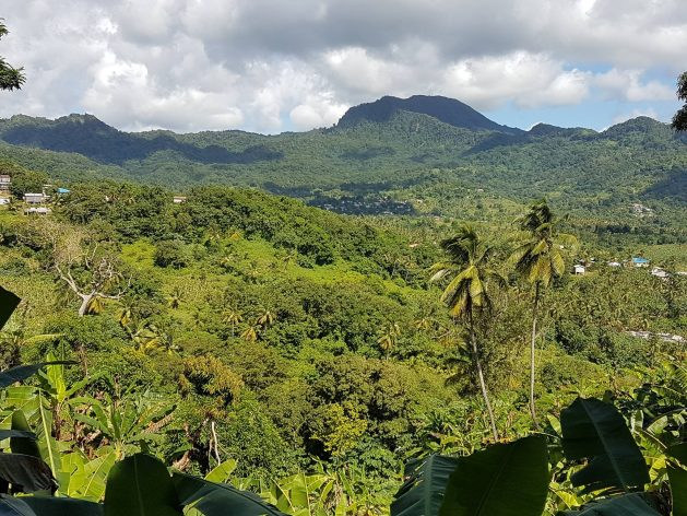 Mountains and vegetation of the Mabouya Valley, Saint Lucia. The Convention on Biological Diversity is reminding the world that 'solutions are in nature' and biodiversity provides the answer to several sustainable development challenges. Credit: Alison Kentish/IPS