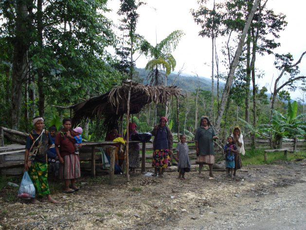 Papua New Guinea (PNG), like many other Pacific Island countries, successfully held COVID-19 at bay last year, aided by early shutting of national borders. However, by March this year, the pandemic was surging in the most populous Pacific Island nation, and by July, it had reported 17,282 cases of the virus and 175 fatalities.