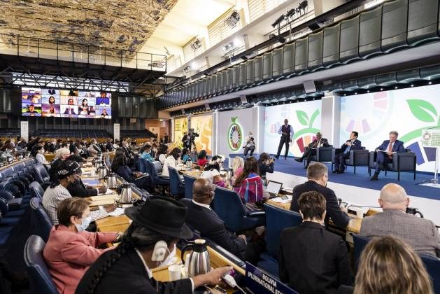 Meeting of the opening day of the UN Food Systems Pre-Summit, held at FAO headquarters in Rome from 26 to 28 July. Photo: Giuseppe Carotenuto /FAO
