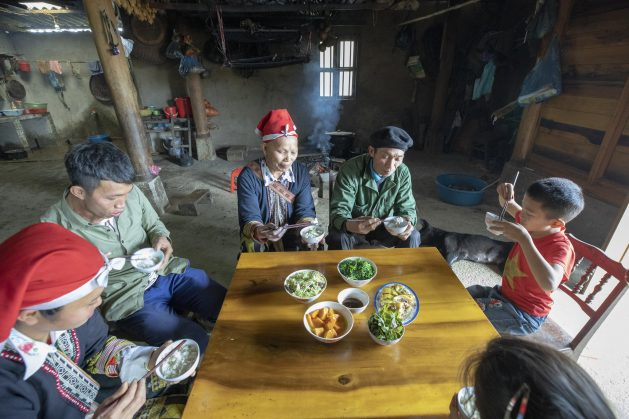 After several years of research and the identification of issues and socio-demographic factors, Zero Hunger is set to continue its pilot stage and prepare its implementation stage. Expectations are high for a transition to healthier diets and better nutrition destined to tackle both under- and over-nutrition.