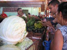 Havana farmers market  Credit: Patricia Grogg/IPS