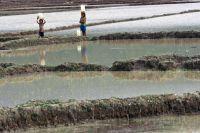 Little girls tote water in Timor-Leste. Credit: UN Photo/Martine Perret