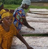 Drying cassava  Credit: Ken Wiegand/USAID