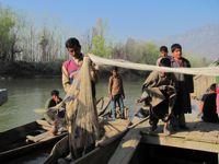 A fisherman tries his luck in Dal Lake in Srinagar. Credit: Athar Parvaiz