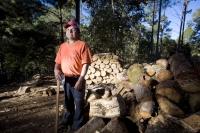 Deforestation causes soil degradation: logging in Chiapas, Mexico.  Credit: Mauricio Ramos/IPS