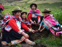 Huama villagers harvesting potatoes. Credit: Milagros Salazar/IPS.