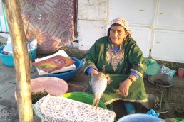 Rahti Begum a fisherwoman sells fish on a roadside in Srinagar, the capital of Kashmir state in India. She says she will be the last woman in her clan to sell fish. Credit: Umar Manzoor Shah/IPS