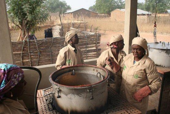 Mit der GEM-Parboiling-Technologie kann Reis rascher und in höherer Qualität hergestellt werden (Bild: Busani Bafana).