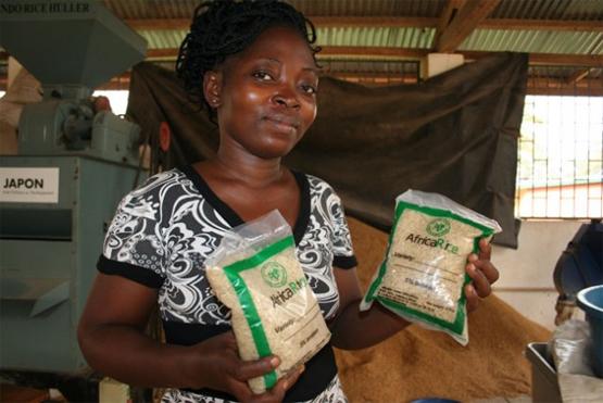 Forschungsassistentin Blance Soussous zeigt Packungen mit Parboiled-Reis (Bild: Busani Bufana/IPS).