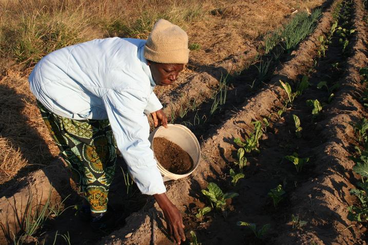 Die Erde verliert jedes Jahr zwölf Millionen Hektar an Ackerland, . 1,5 Milliarden Menschen sind von der voranschreitenden Desertifikation betroffen