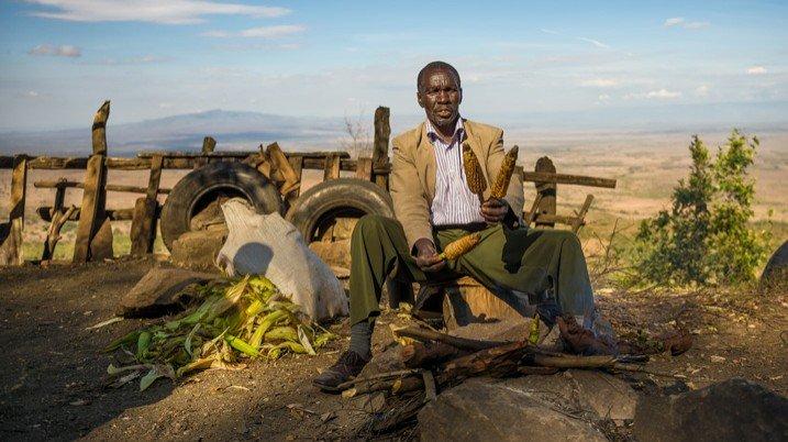 Die Landwirtschaft hat bei Jugendlichen ein schlechtes Image: Das Durchschnittsalter von Bauern in Afrika liegt bereits bei 60 Jahren. (Bild: Nick Fox/Shutterstock.com)