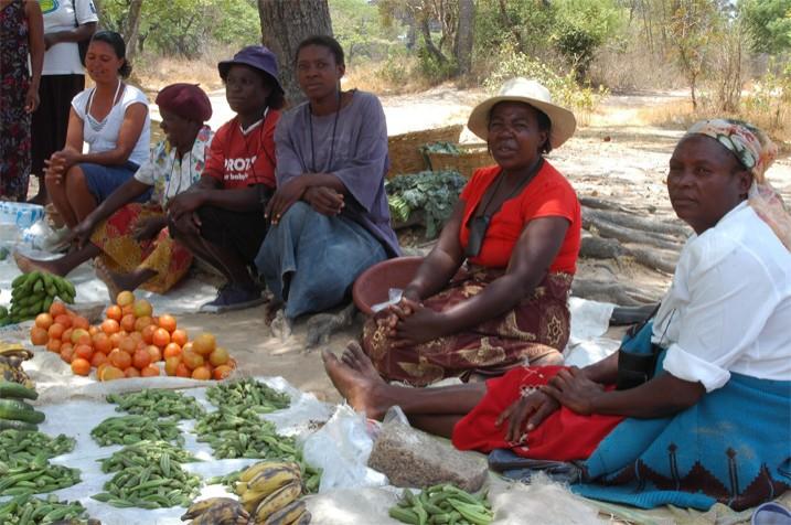 Obwohl Simbabwe unter einer Ernährungskrise leidet, bleiben die Marktfrauen häufig auf ihrem Gemüse sitzen. (Bild: Michelle Chifamba/IPS)