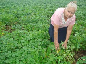 Socorro María Olivas shows her crop of good quality beans in Estelí, Nicaragua.  - Danilo Valladares/IPS