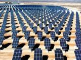 Field of photovoltaic solar panels. - Public domain