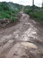 Trans-Amazonian Highway outside Altamira in the northern Brazilian state of Para. - Mario Osava/IPS