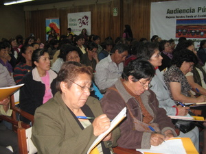 Participants at the hearing in Cuzco. / Credit:Mariela Jara /IPS