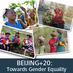 Beijing+20: Towards Gender Equality